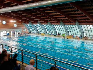 piscina-Torrevieja-municipal