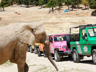 Jeep-Tour-Rio-Safari-Aitana-what-to-do-in-torrevieja