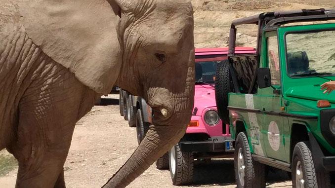 Jeep-Tour-Rio-Safari-Aitana-what-to-do-in-torrevieja