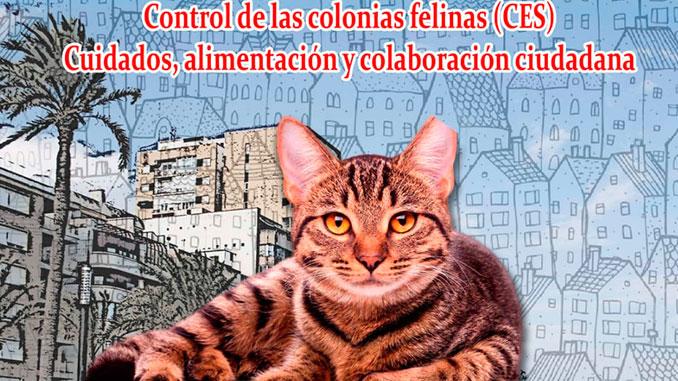 Proyecto-CES-Torrevieja-castrar-esterilizar-soltar-CONCEJALÍA-DE-PROTECCIÓN-ANIMAL-3