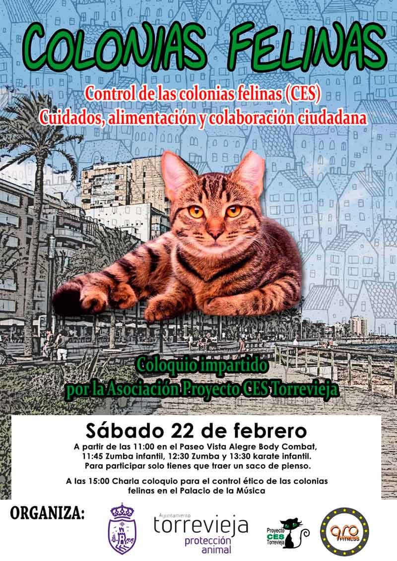 Proyecto-CES-Torrevieja-castrar-esterilizar-soltar-CONCEJALÍA-DE-PROTECCIÓN-ANIMAL-4