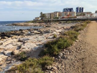 playa para perros en Torrevieja pets friendly dogs beach
