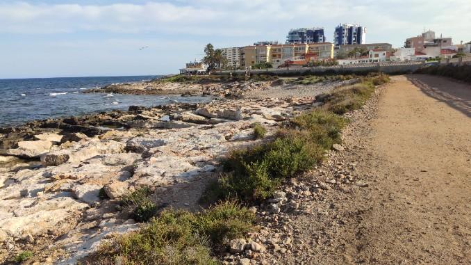 playa para perros en Torrevieja pets friendly dogs beach