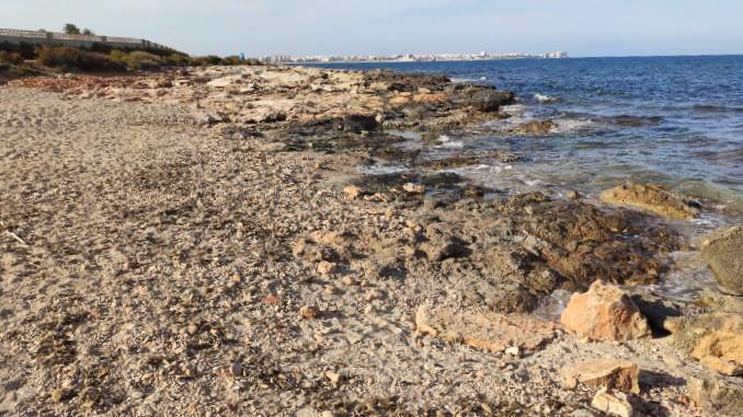 playa-para-perros-en-Torrevieja-pets-friendly-dogs-beach-1
