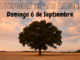 La memoria de los árboles Torreviejacom