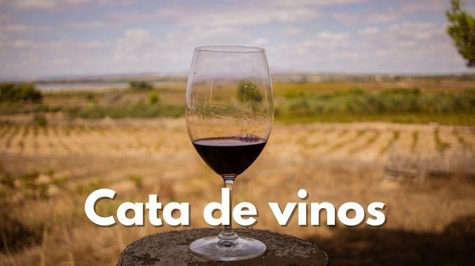 cata de vinos en torreviejacom Bodega Sopla Levante La Mata