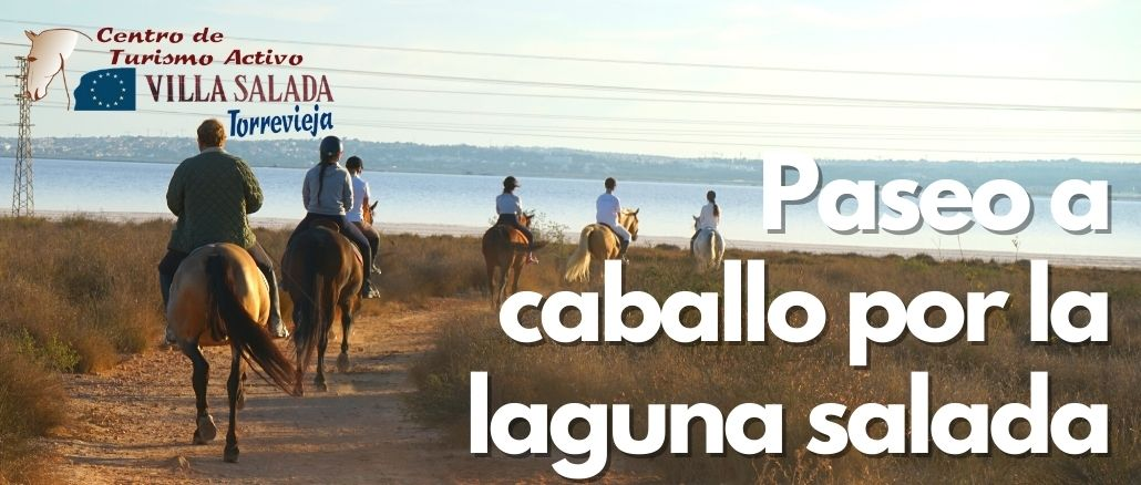 Paseo a caballo por la laguna salada VillaSalada Torreviejacom