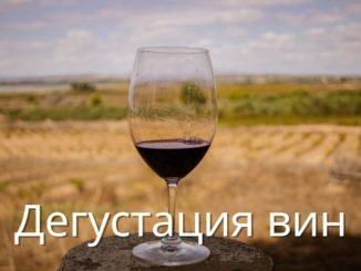 Дегустация вин в Торревьехе