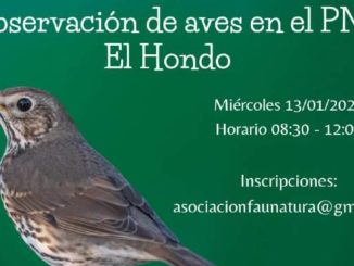Parque Natural El Hondo Torrevieja La Mata Asociación Faunatura