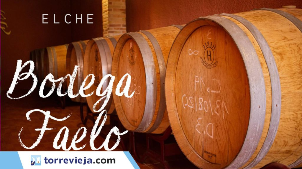 visita bodega Faelo Elche vinos Torrevieja